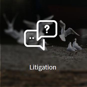 large_litigation