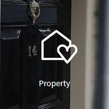 large_property